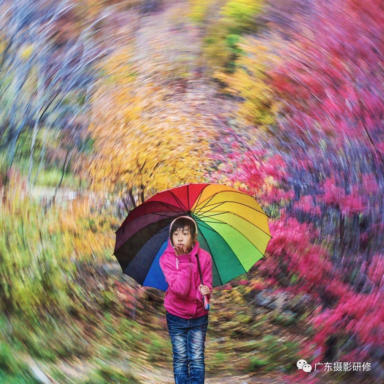 第10期名家点评摄影作品公益网课在线影展
